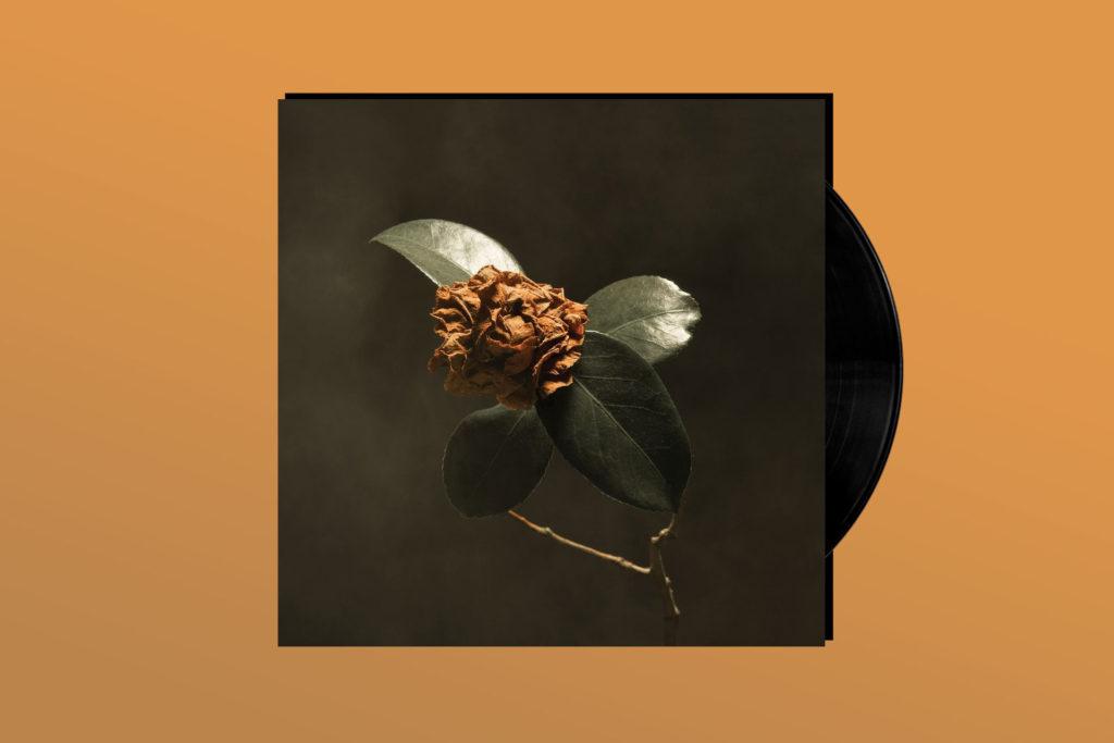 ALBUM REVIEW: St. Paul & the Broken Bones Bottle the Classic R&B Sound on 'Young Sick Camellia'