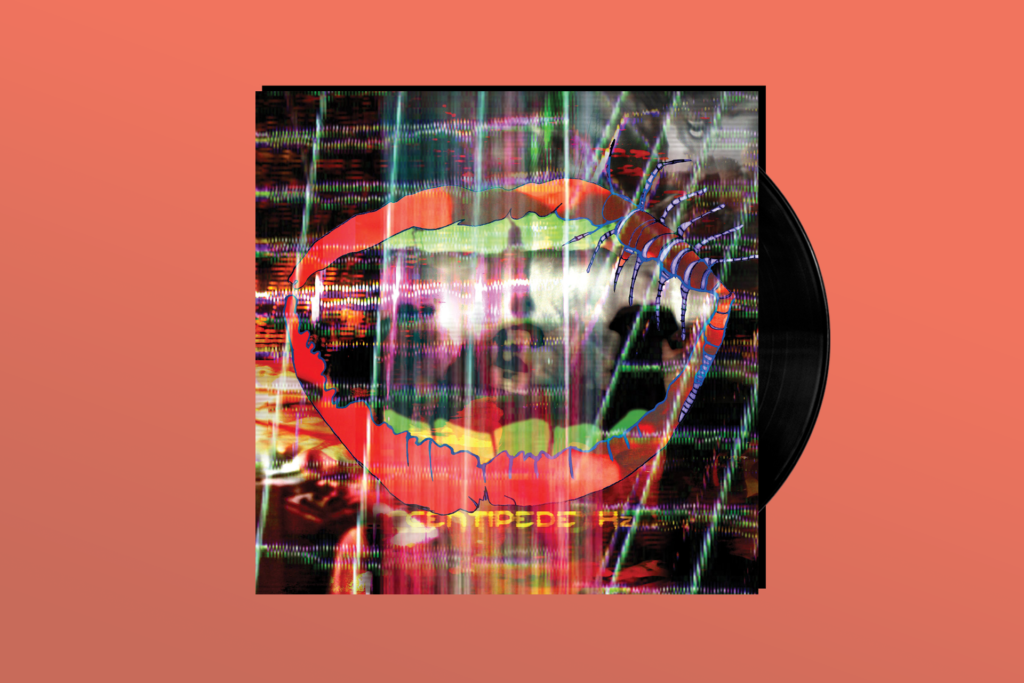 THE UNDERDOGS: Animal Collective's 'Centipede Hz'