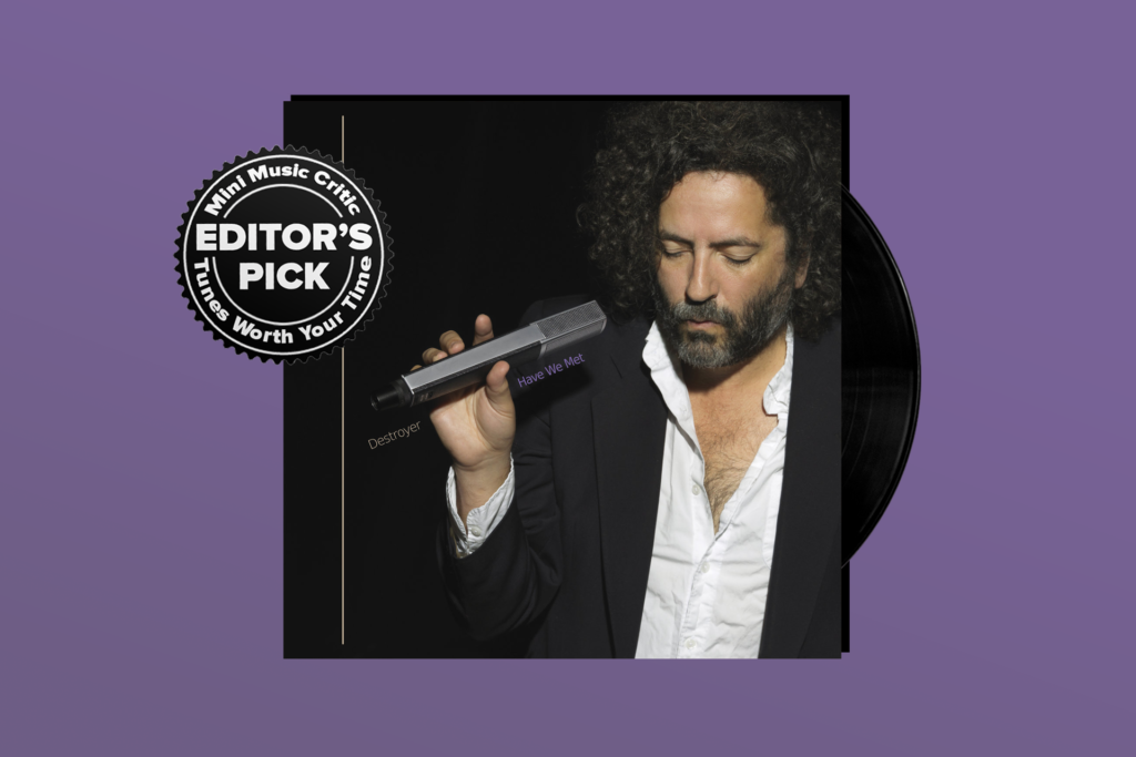 ALBUM REVIEW: Destroyer Returns With 'Have We Met'